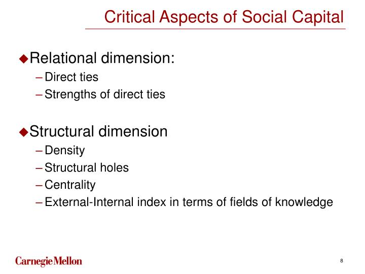 Critical Aspects of Social Capital