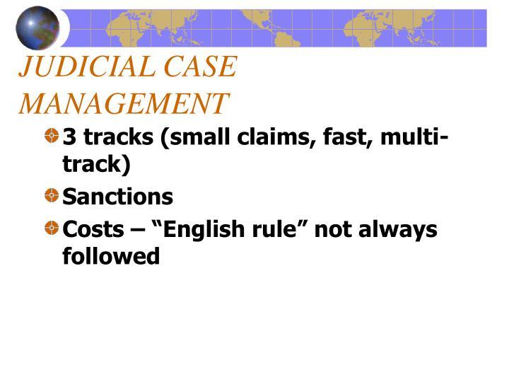 JUDICIAL CASE MANAGEMENT
