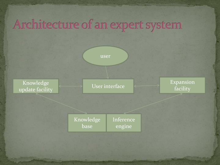 Architecture of an expert system