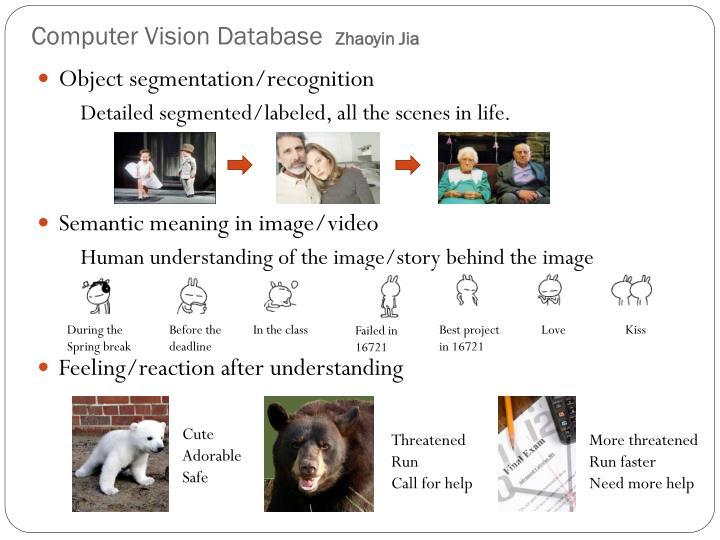 Computer Vision Database