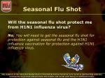 seasonal flu shot