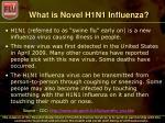 what is novel h1n1 influenza