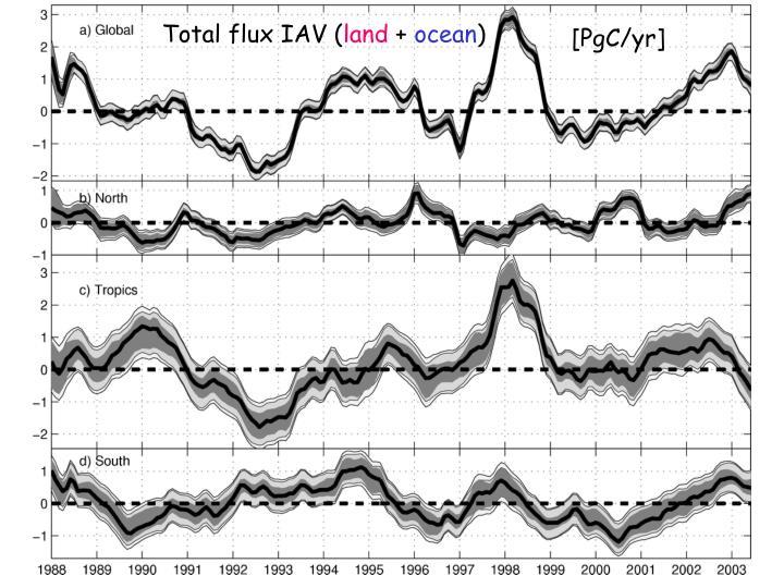 Total flux IAV (