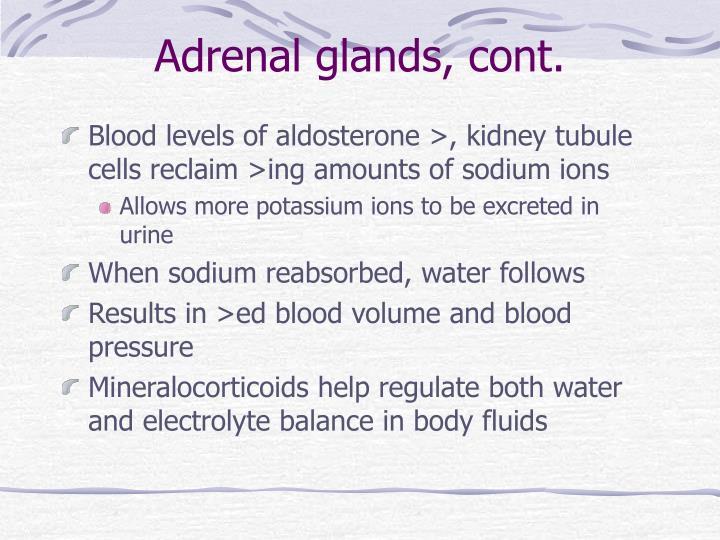 Adrenal glands, cont.