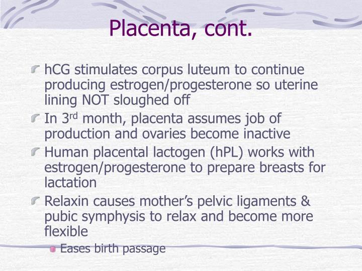 Placenta, cont.