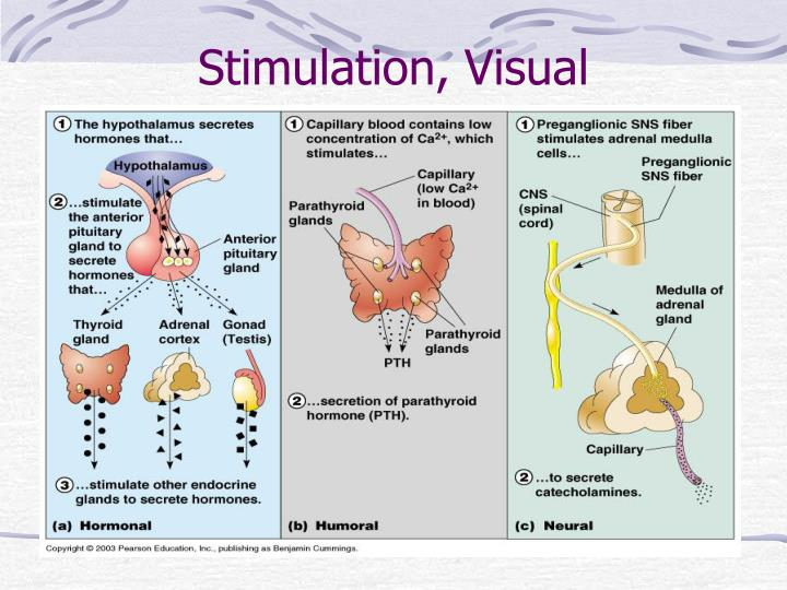 Stimulation, Visual