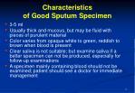 characteristics of good sputum specimen