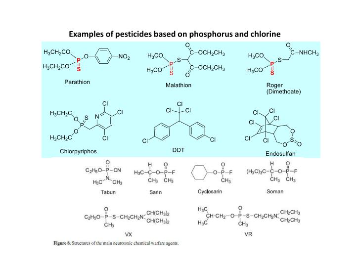 Examples of pesticides based on phosphorus and chlorine