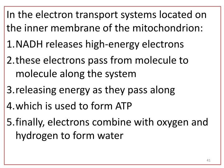 In the electron transport