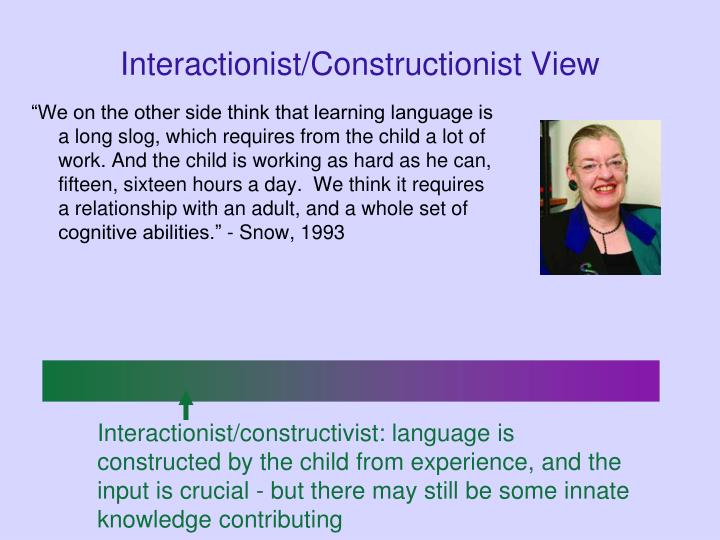 Interactionist/Constructionist View