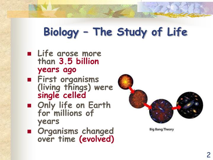 Biology the study of life