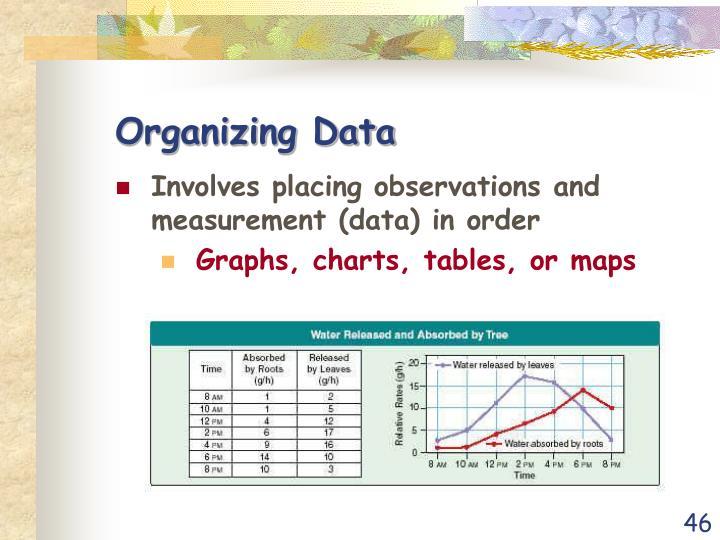 Organizing Data