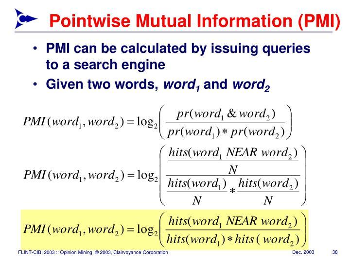 Pointwise Mutual Information (PMI)