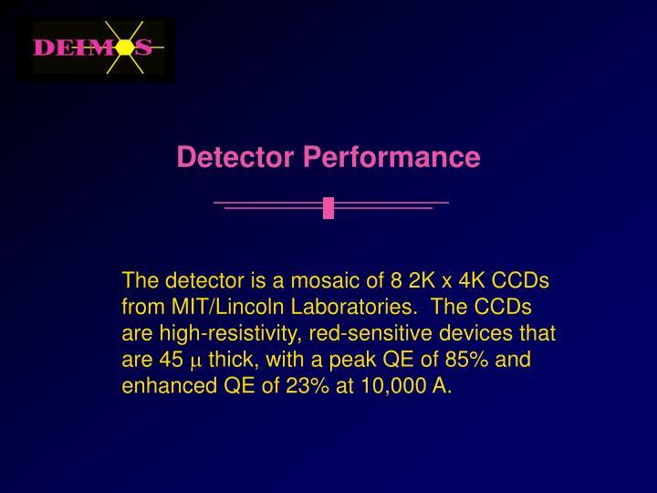 Detector Performance