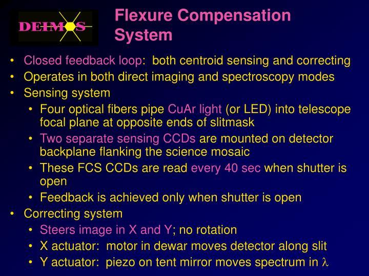 Flexure Compensation System