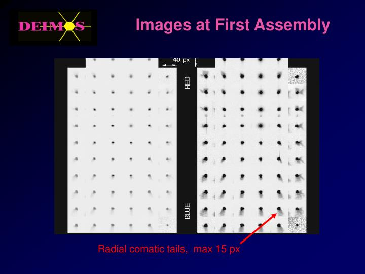 Images at First Assembly