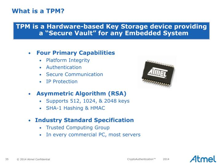 What is a TPM?