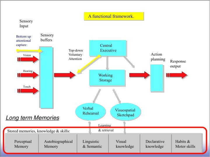 A functional framework.