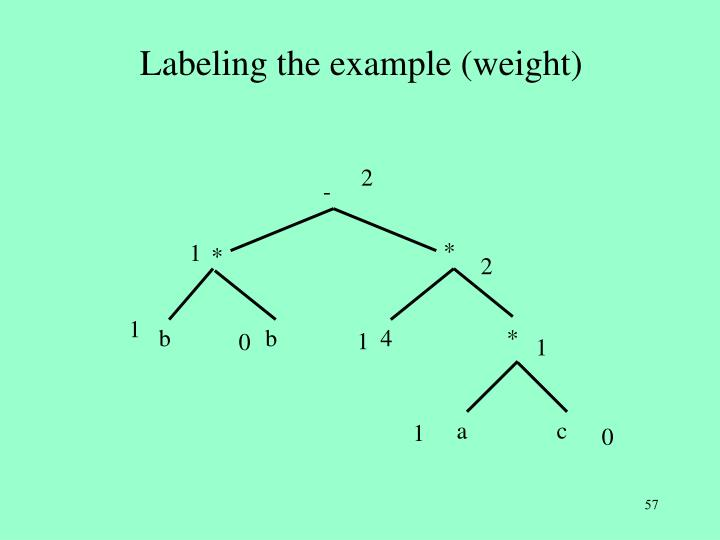Labeling the example (weight)