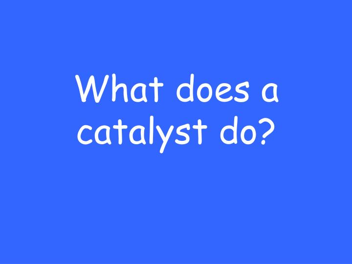 What does a catalyst do?