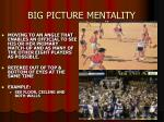 big picture mentality