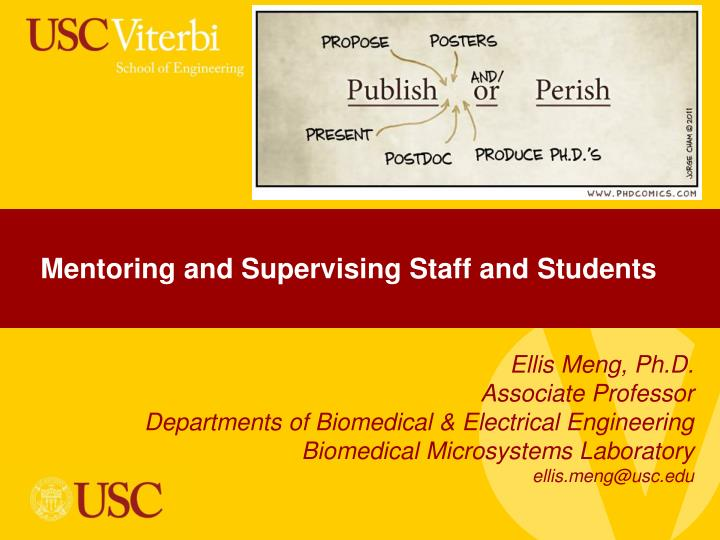 mentoring and supervising staff and students n.
