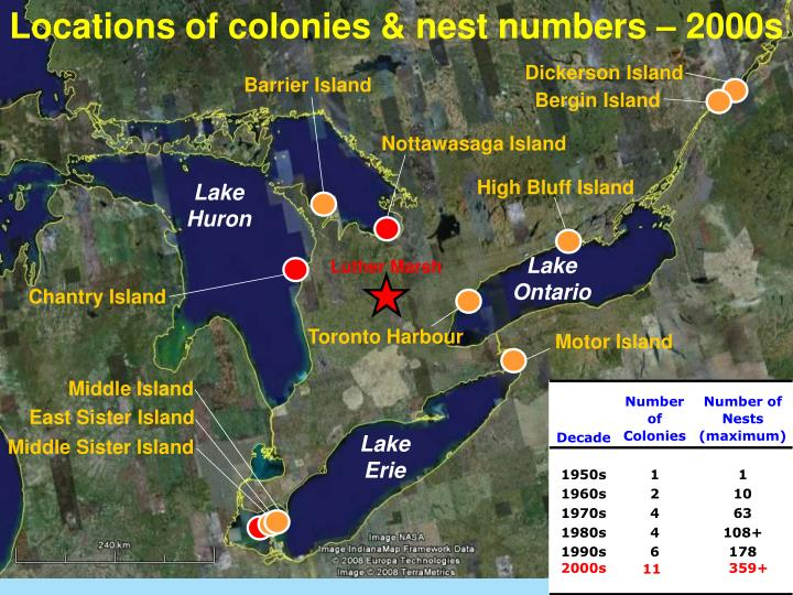 Locations of colonies & nest numbers – 2000s