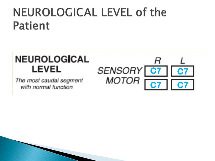 NEUROLOGICAL LEVEL of the Patient