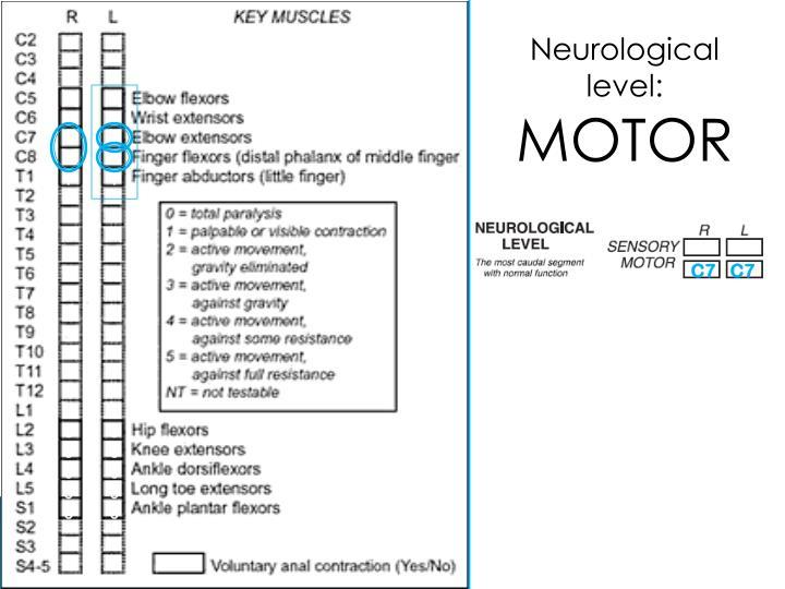 Neurological level: