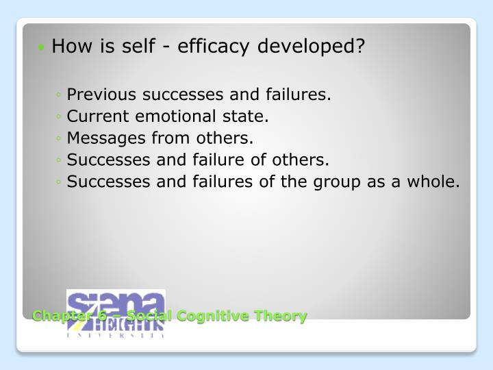 How is self - efficacy developed?