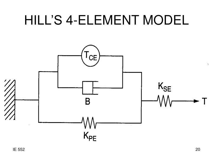HILL'S 4-ELEMENT MODEL