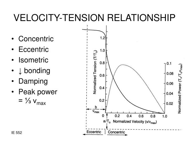 VELOCITY-TENSION RELATIONSHIP