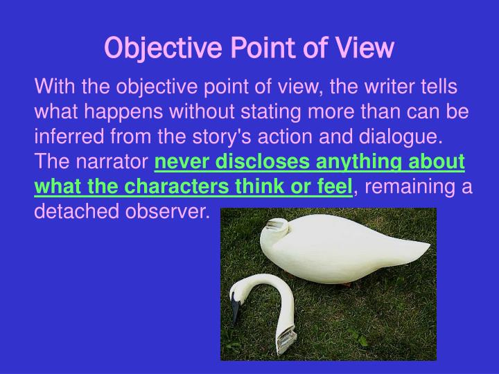 objective point of view