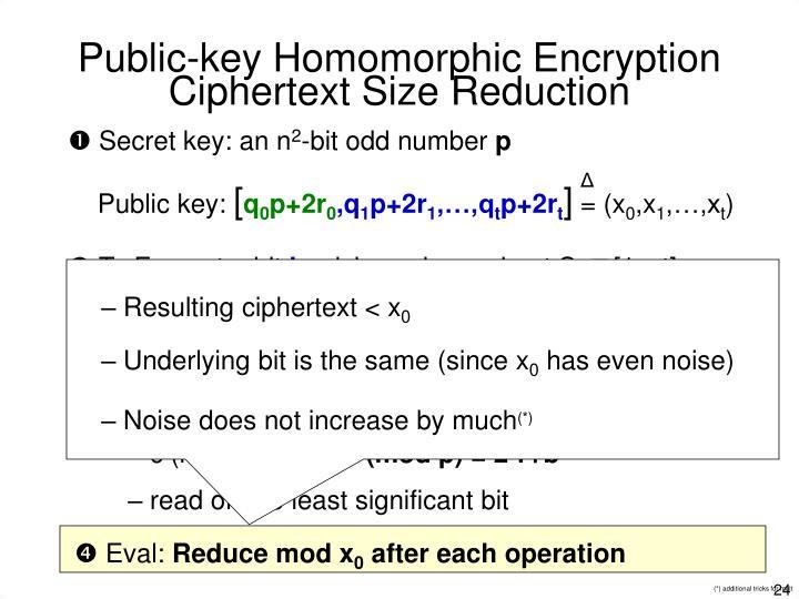 Public-key Homomorphic Encryption