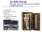 air rifle storage nra rule store guns so they are not accessible to unauthorized persons