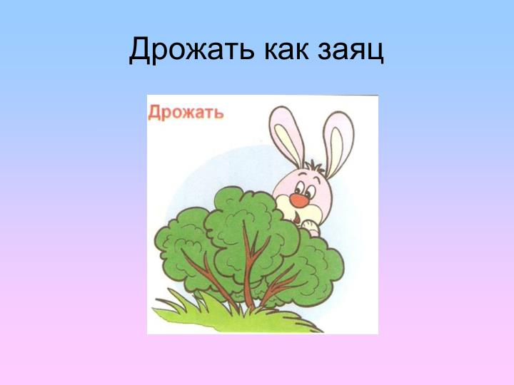 Дрожать как заяц