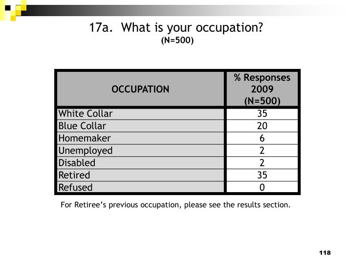 17a.  What is your occupation?