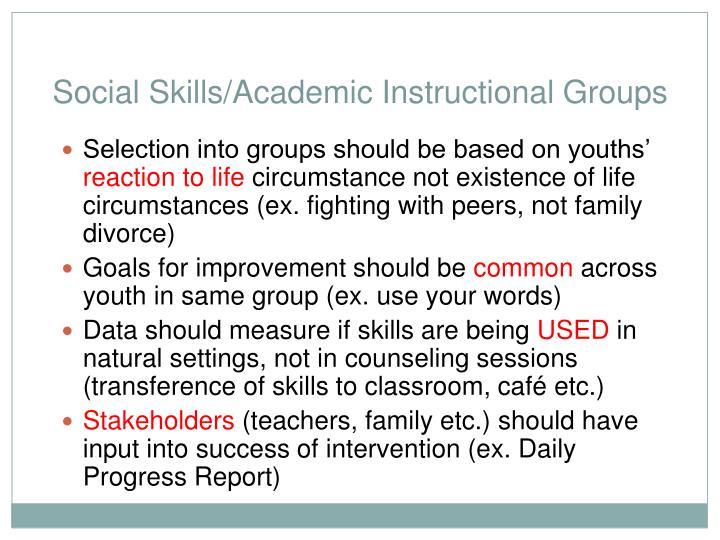Social Skills/Academic Instructional Groups