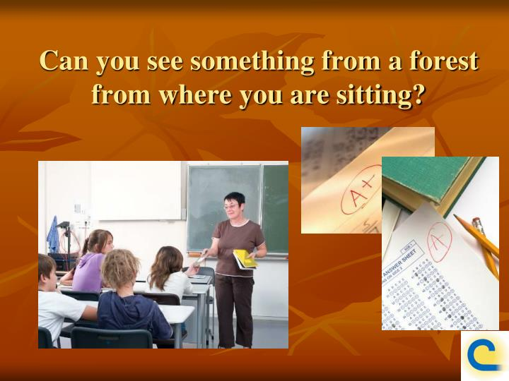 Can you see something from a forest from where you are sitting?
