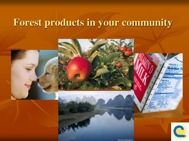 Forest products in your community