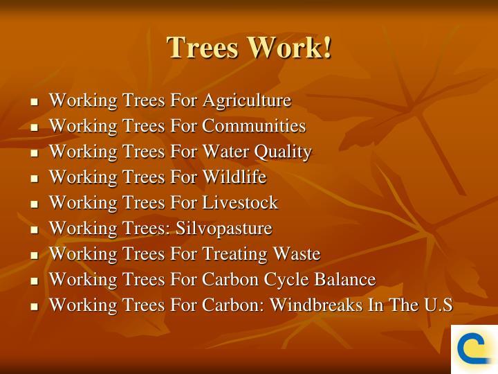 Trees Work!