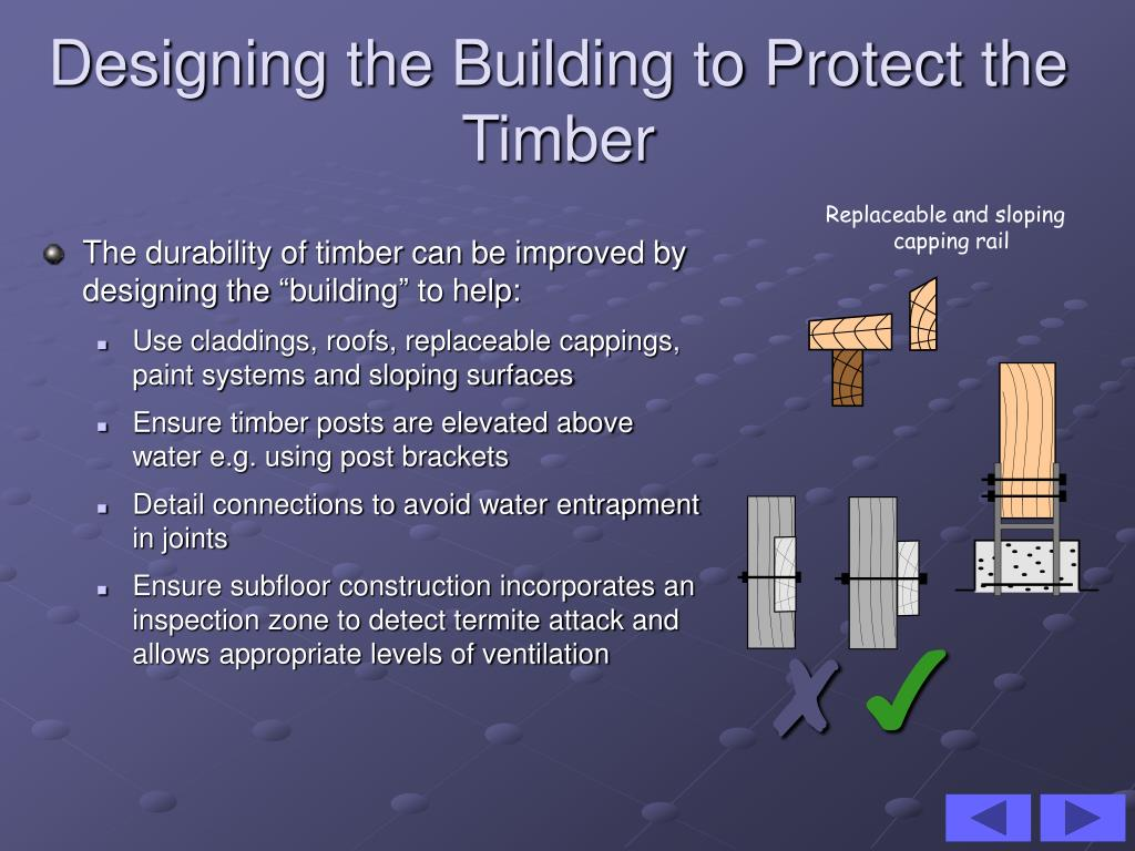 PPT - Defects in Timber PowerPoint Presentation - ID:3118950