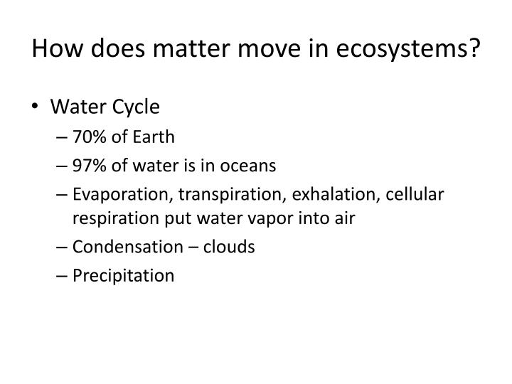 How does matter move in ecosystems?