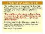 dahlonega gold rush1
