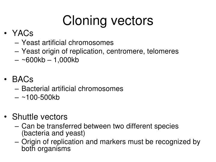 Cloning vectors