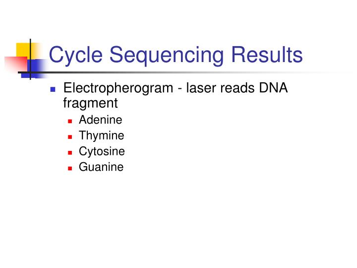 Cycle Sequencing Results