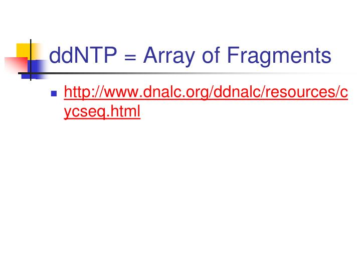 ddNTP = Array of Fragments