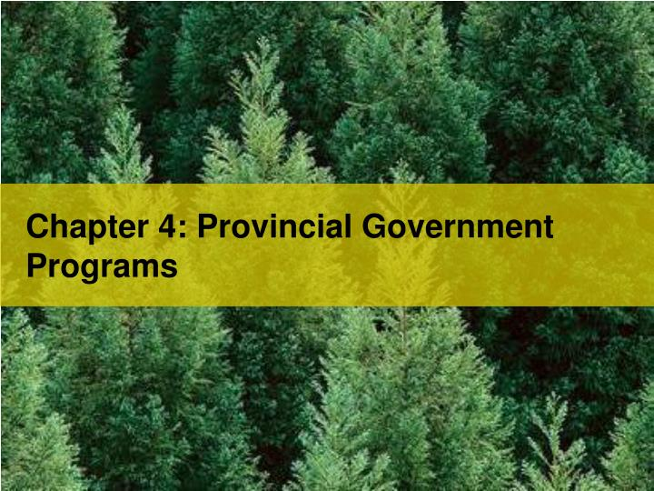Chapter 4: Provincial Government Programs
