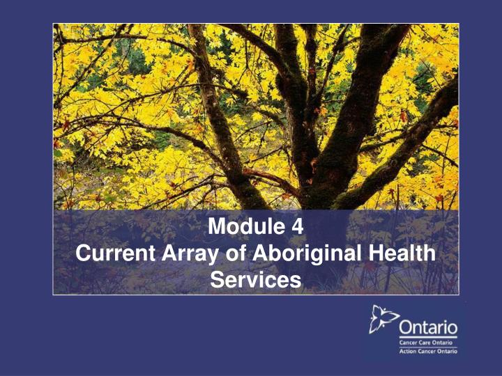 Module 4 current array of aboriginal health services