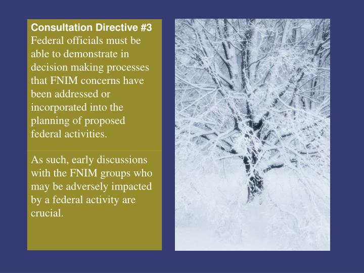 Consultation Directive #3